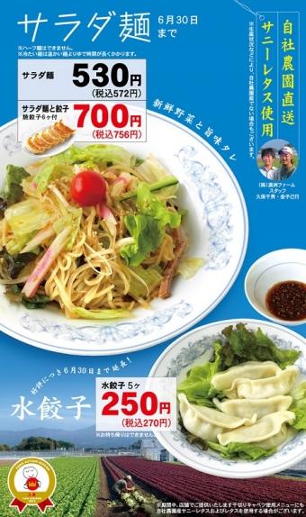 餃子の満州サラダ麺