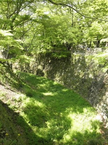 岡崎城の緑の堀