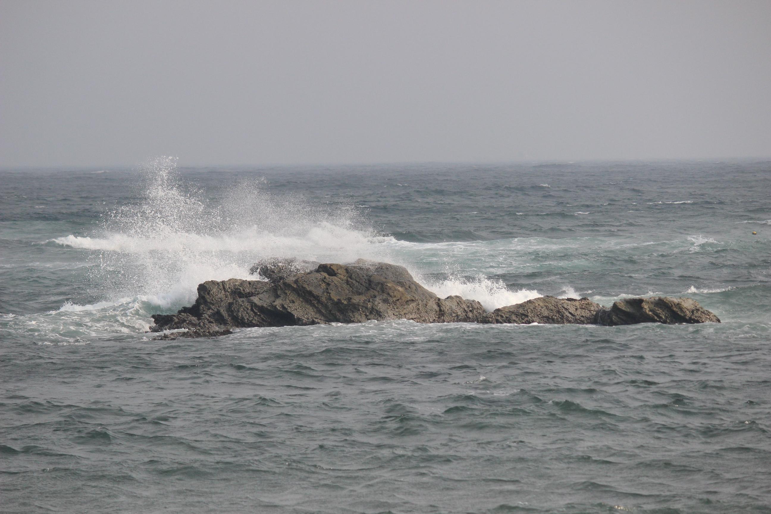 wave 003