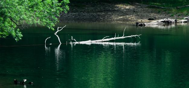 切込 刈込み湖