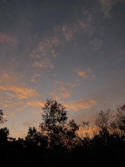 20110926g.jpg