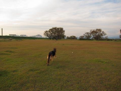 20111114_b.jpg