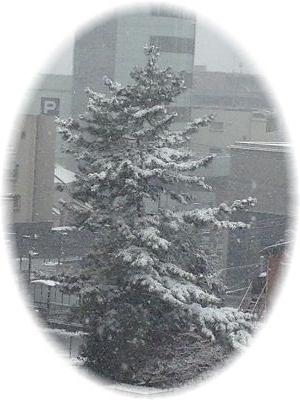 雪景色 横向き 円形