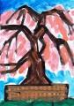 4祇園夜桜