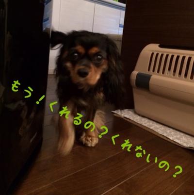 fc2blog_20140320175206cc8.jpg