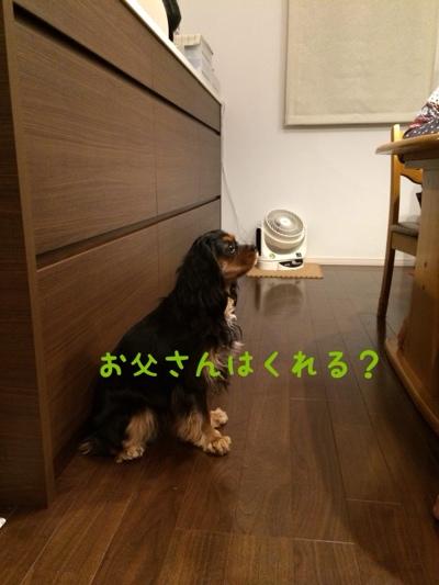 fc2blog_20140322213925f94.jpg