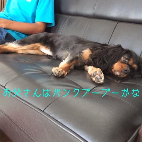 fc2blog_201408311210413e4.jpg