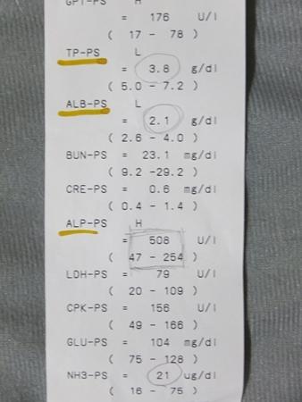28844-3.jpg