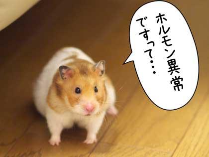 がんばっ!2