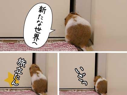 しめしめ2