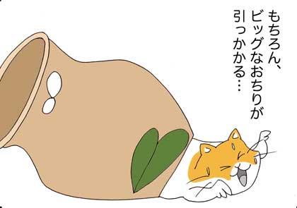ヤドカリ1