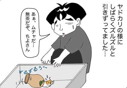 ヤドカリ2