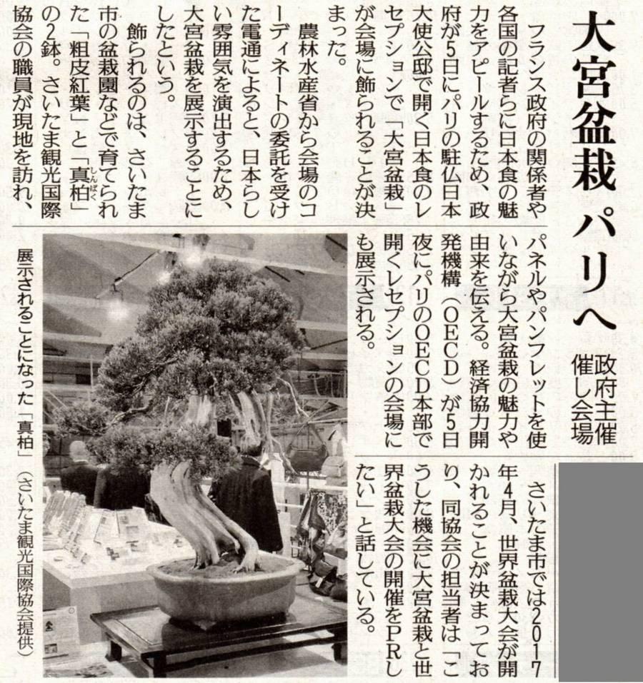 2014年5月2日付 読売新聞 「大宮盆栽 パリへ」