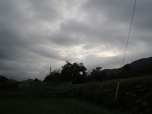DSCN4096.jpg