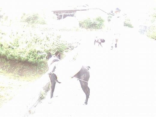 DSCN5660.jpg