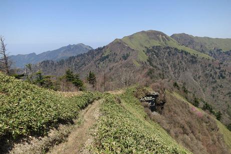 笹ヶ峰を観る