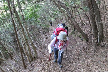兜岩への登山道