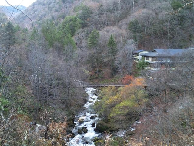 山水観湯川荘の吊橋 (9)