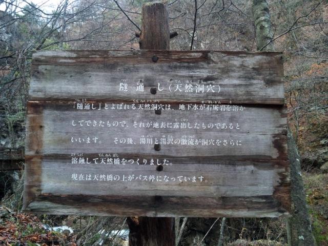 隧道しの橋 (8)