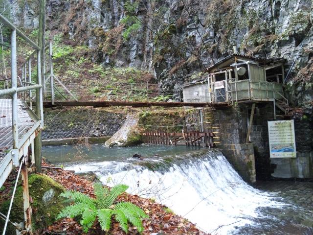 小大野川取入口の吊橋① (5)