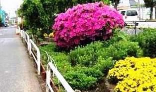 花壇がきれい