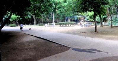 手通公園4
