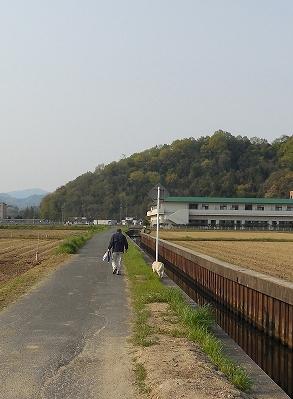 2014_4_29_1.jpg
