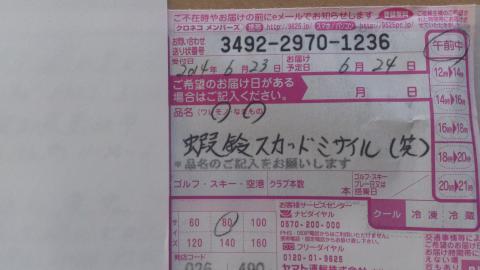 DSC_0508_convert_20140630111007.jpg