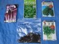 H26.8.30冬野菜種袋④@IMG_2857