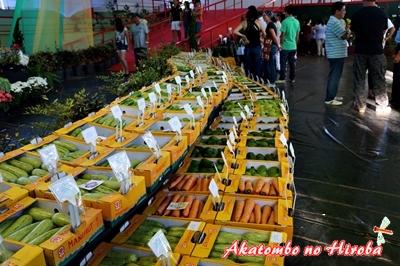 0-秋祭り2014年野菜