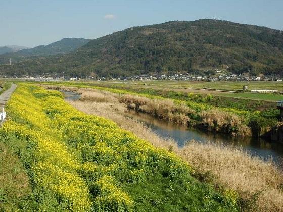 kiyama031201.jpg