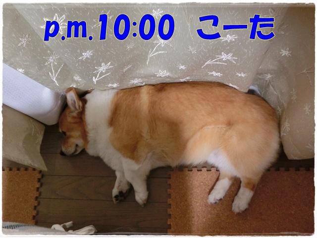 6-3CIMG1421.jpg
