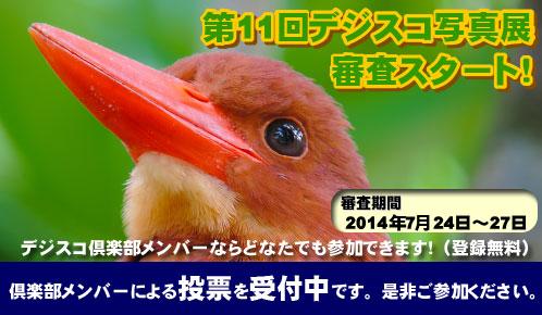 banner_shinsa.jpg
