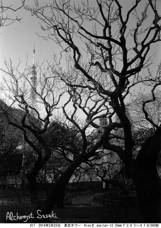 東京タワー617-19