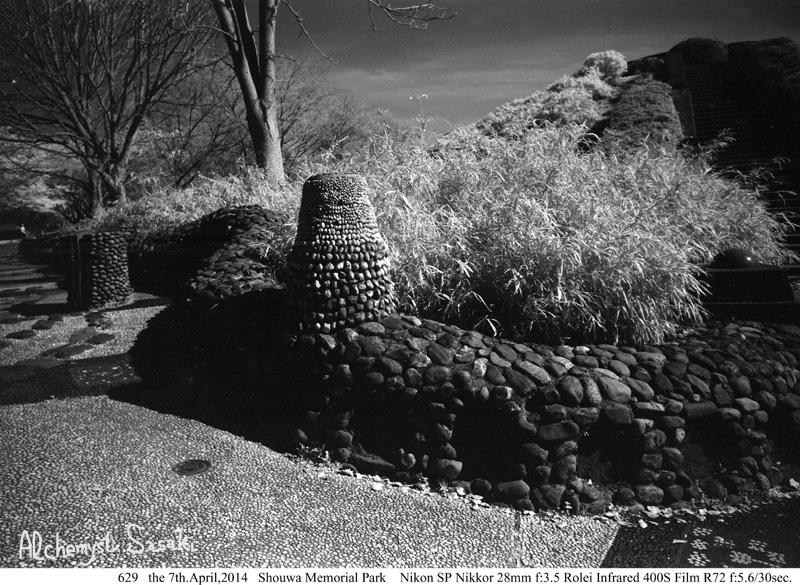 昭和記念公園629-8a