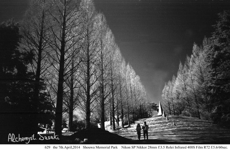 昭和記念公園629-38