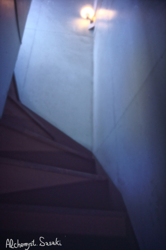 不思議な階段DSC09795