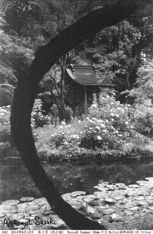 本土寺642-18