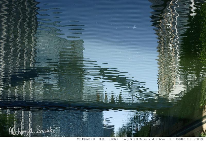 SonyDSC09202.jpg