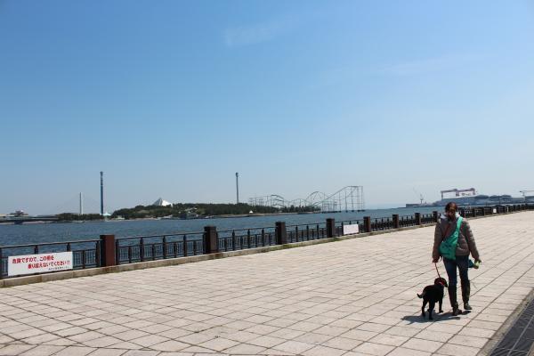 海の公園11
