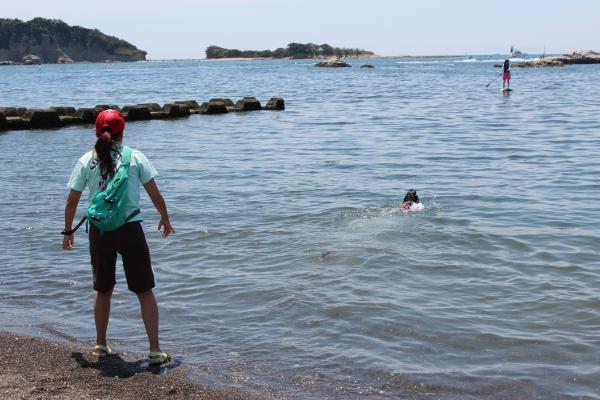クララの海岸物語13