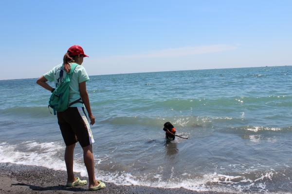 クララの海岸物語19