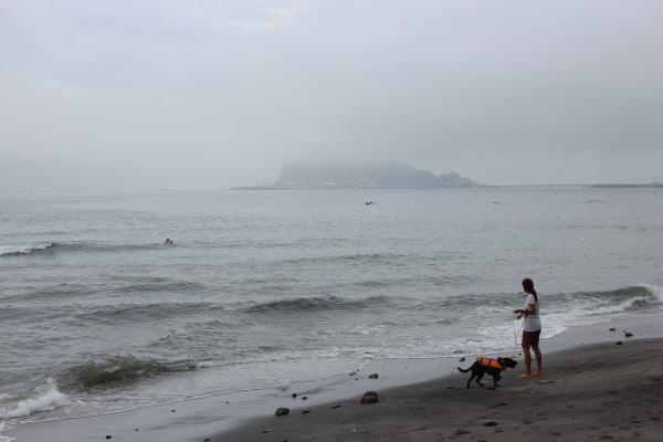 七里ヶ浜2