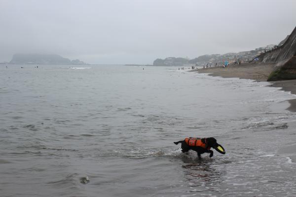 七里ヶ浜4