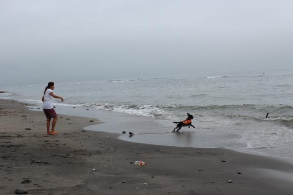 七里ヶ浜8