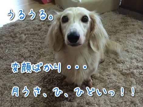 20140818153451.jpg