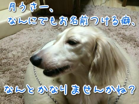20140825242326.jpg