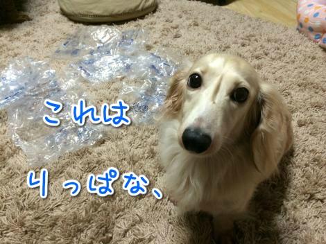 20140827021505.jpg