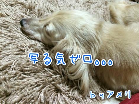 20140830023352.jpg