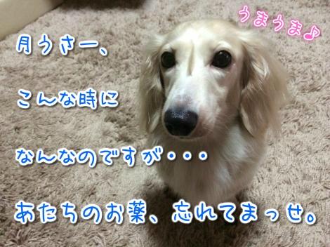 20140910212405.jpg